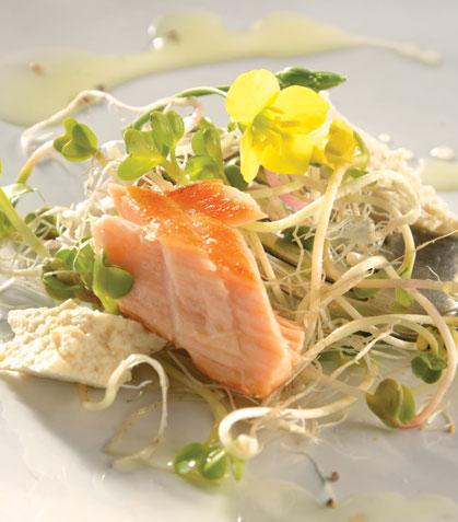Ensalada de germinados y salmón con aderezo de miso