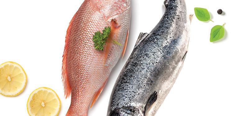 Pescado azul vs. pescado blanco