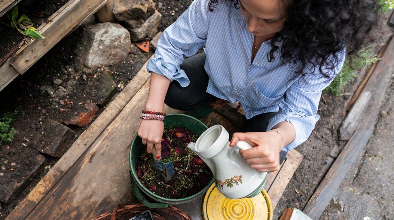 abono orgánico para plantas casero