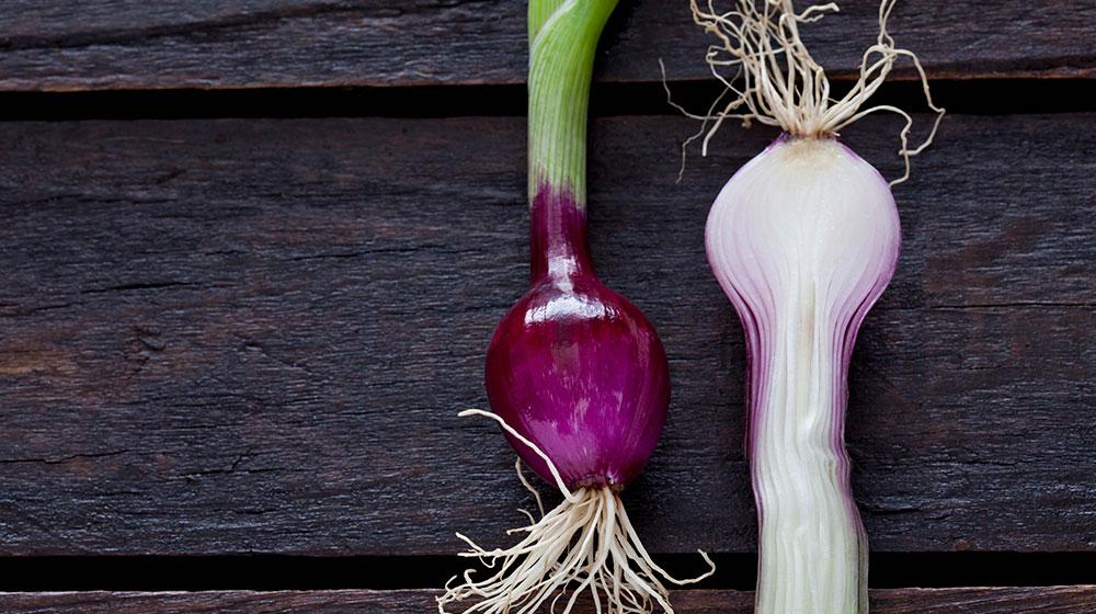Beneficios de la cebolla para la salud