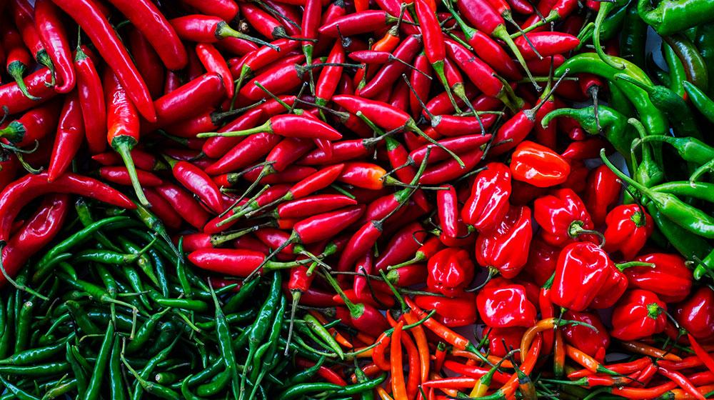 Curiosidades de los chiles mexicanos: los más sabrosos del mundo | Cocina  Fácil