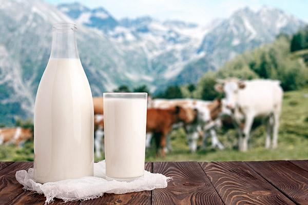 leche animal