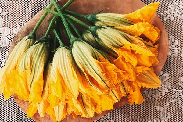 recetas con flor de calabaza
