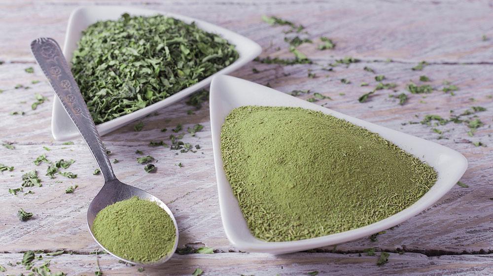 Por qué el té verde ayuda a perder peso