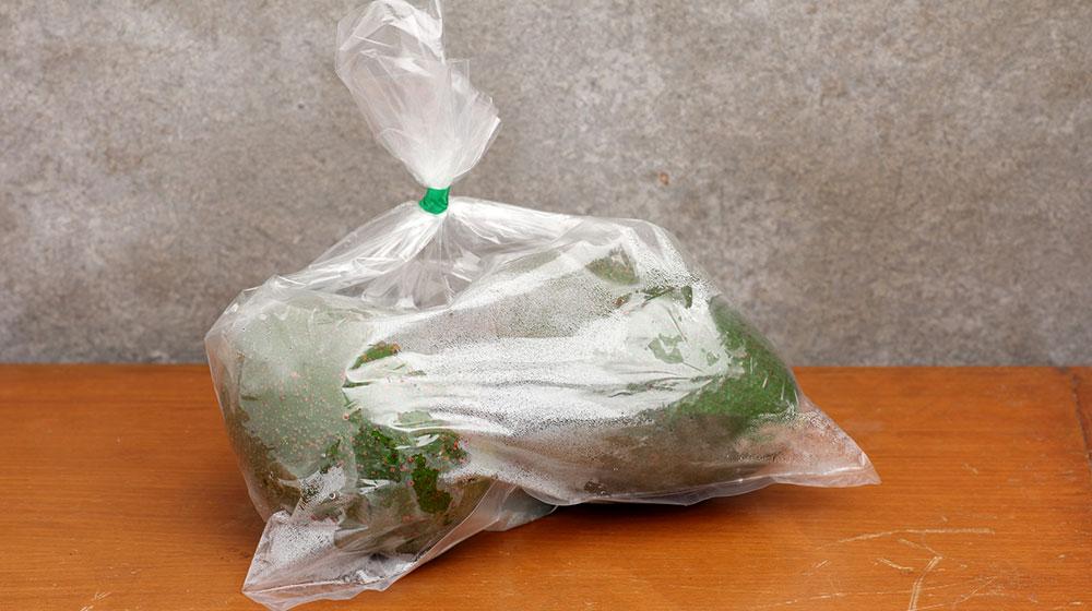 Tips para madurar aguacates súper fáciles