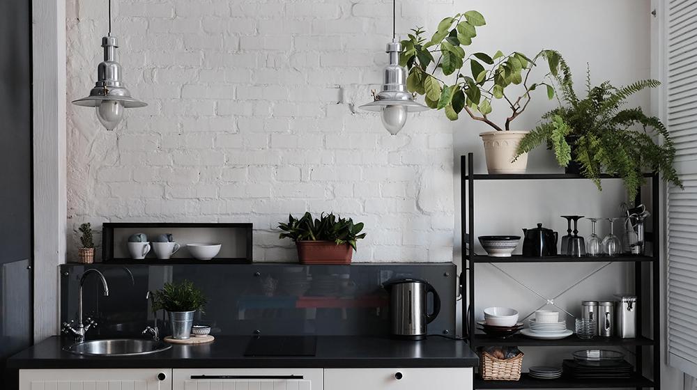 5 razones para tener plantas en tu cocina