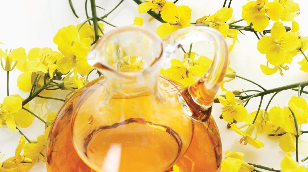 4 beneficios del aceite de canola