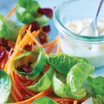 Ensalada de verduras crudas con mayonesa de chile serrano