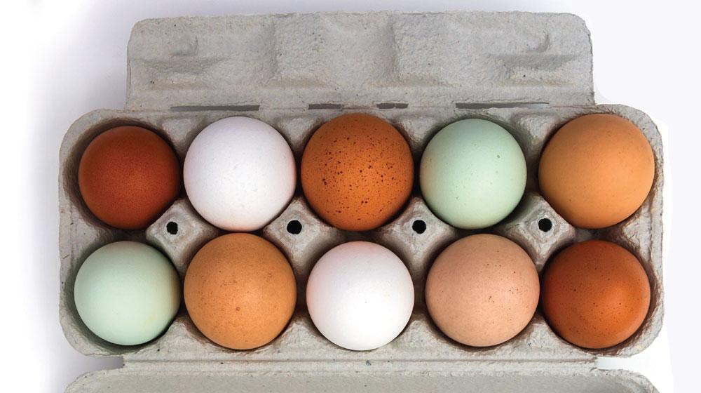 dieta del huevo cocido funciona