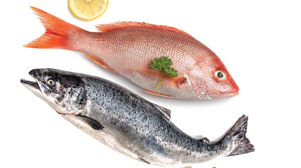 huachinango pescado blanco