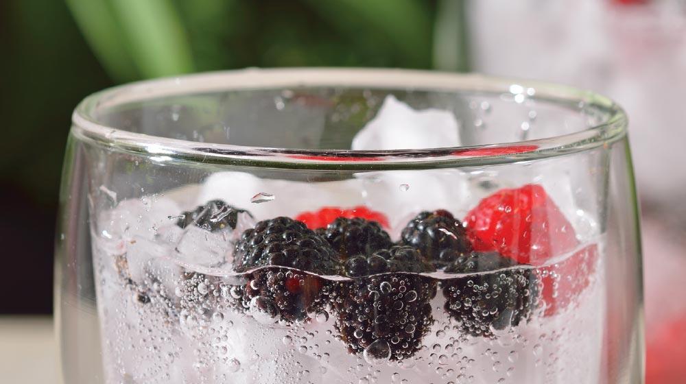 mezcalina con frutos rojos