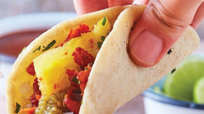 tortillas taqueras
