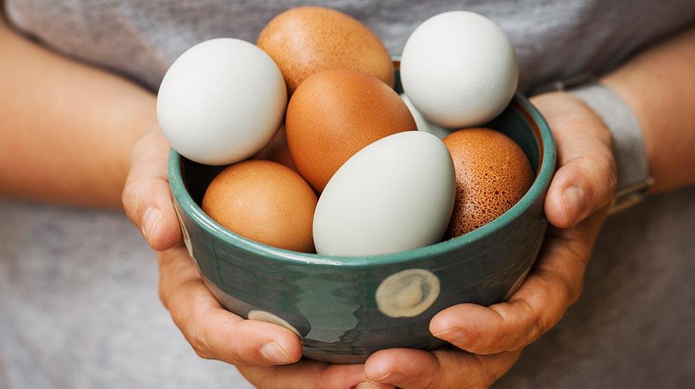 huevo rojo-huevo blanco