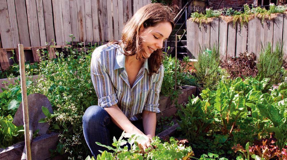 Cuida tu jardín con aspirinas