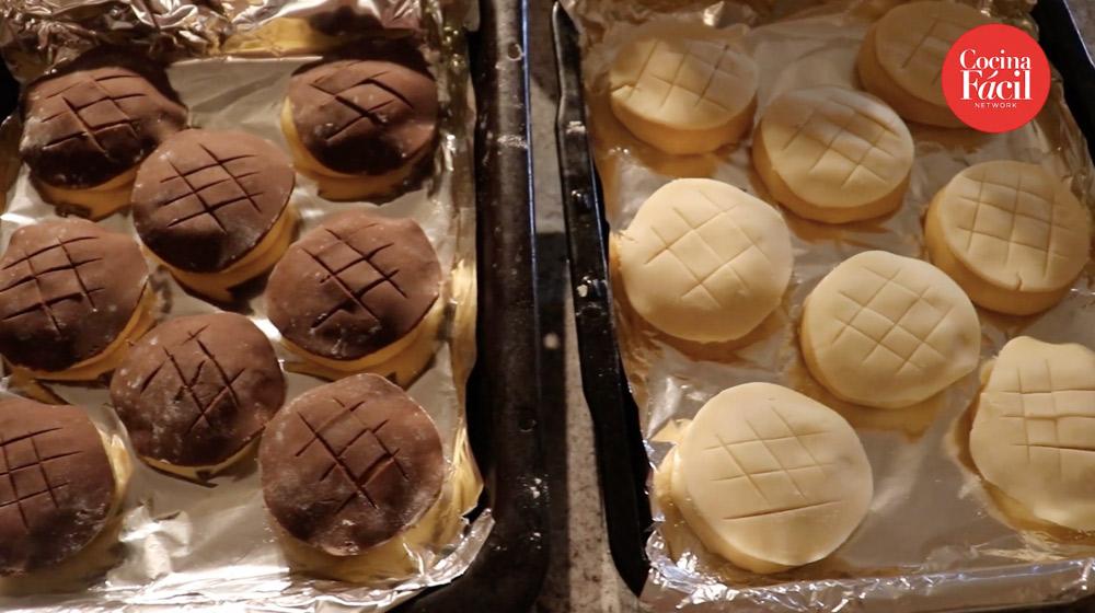 conchas de chocolate y vainilla