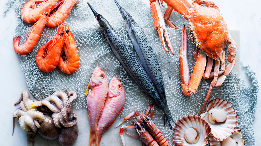 Diferencias entre pescados y mariscos