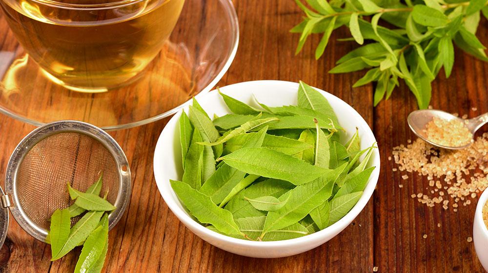 Beneficios del té de cedrón
