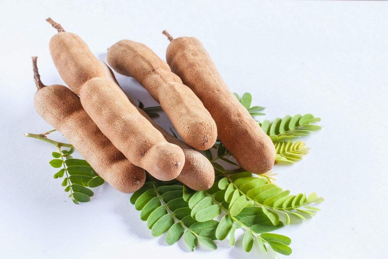 Beneficios del tamarindo base de dulces recetas de comida y bebidas