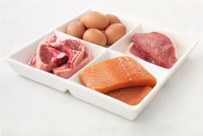 Proteínas, carnes del plato del bien comer