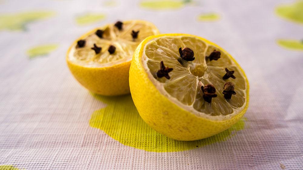 limón con clavos de olor: como ahuyentar moscas