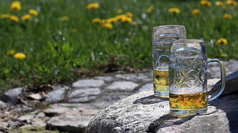 Cerveza para tu jardín
