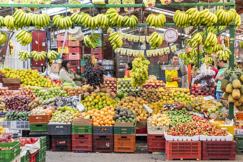 canasta basica de alimentos que es y que alimentos la componen