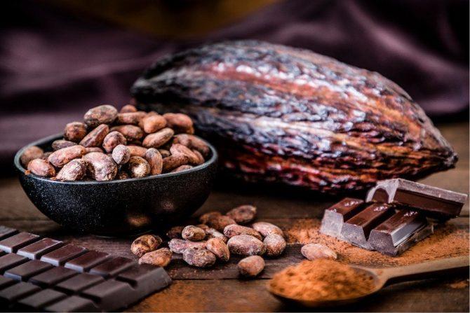 Cacao y chocolate oscuro y amargo