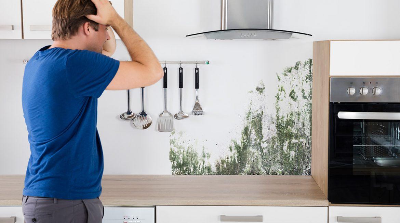 moho en las paredes: remedios caseros fáciles y efectivos
