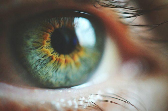 alimentos que mejoran la vista y evitan enfermedades de los ojos