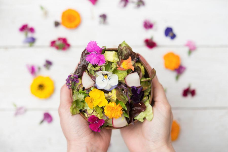 Cuáles son las flores comestibles