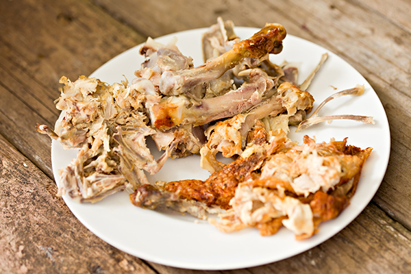 Alimentos prohibidos para perros: huesos