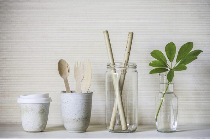 plantas-magicas-para-el-hogar-bambu