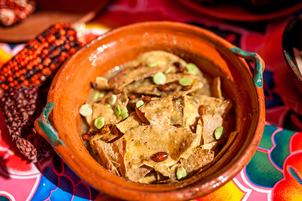 Insectos comestibles en México: jumiles
