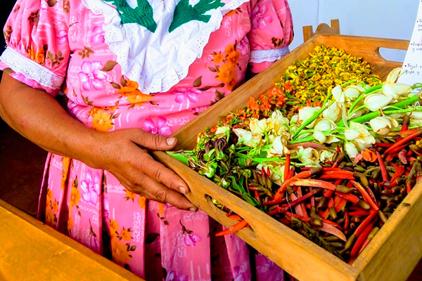 flores comestibles mexicanas