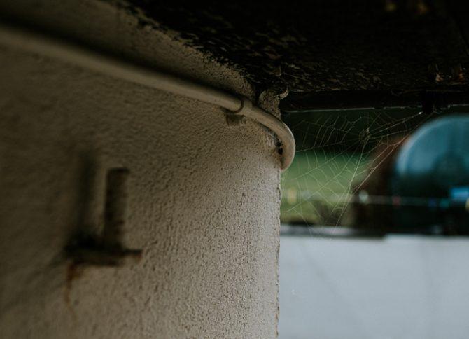 qué hacer para que las arañas no entren a la casa